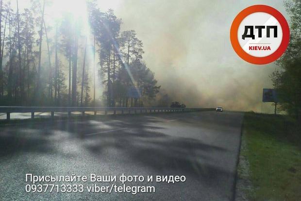 Под Киевом горит лес, трасса на Обухов полностью затянута дымом