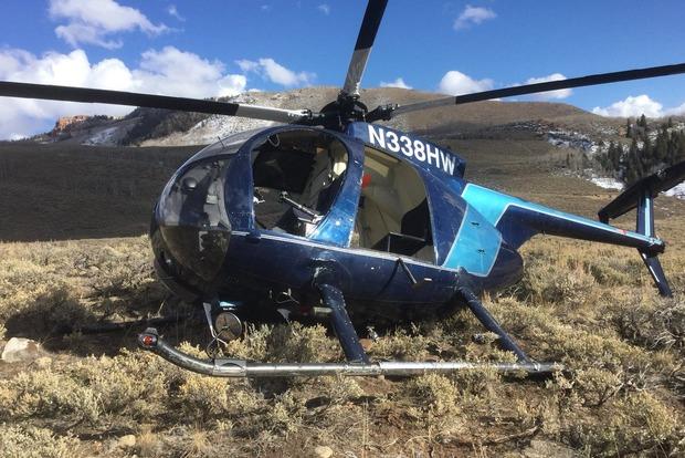 В США лось сбил вертолет