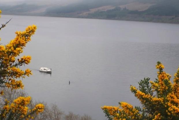 На озере Лох-Несс туристы опять заметили чудовище