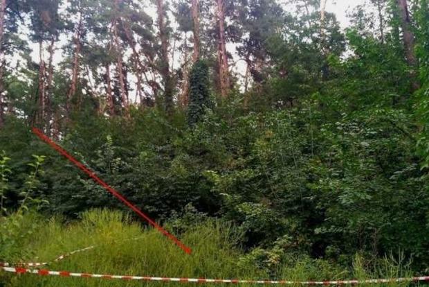 Орудует маньяк: в Киеве нашли тела зверски убитых женщин