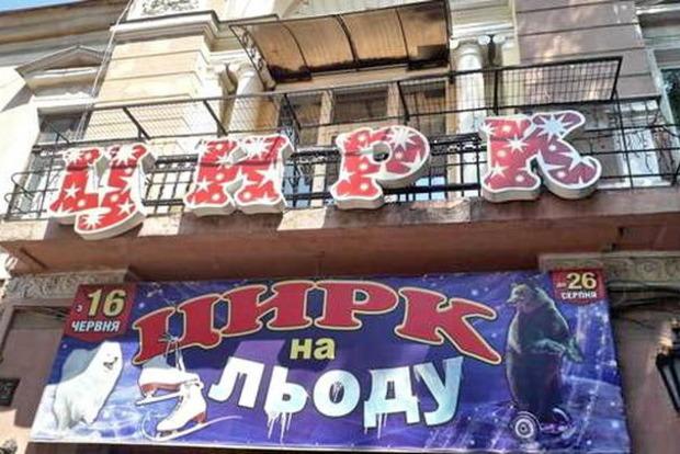 Беларусскому цирку запретили показывать в Одессе бурых медведей