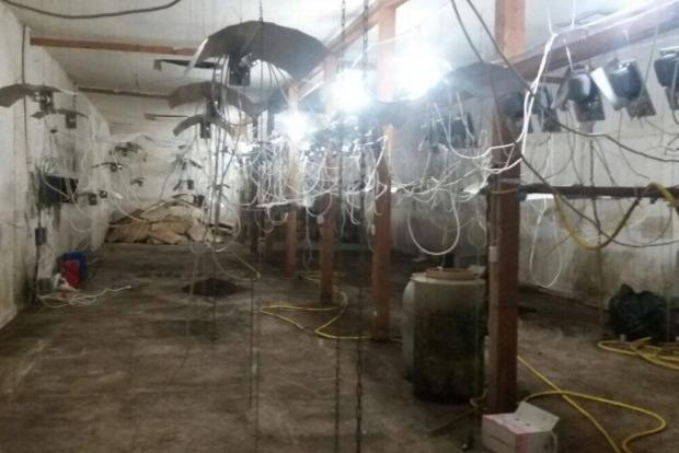 Закарпатская банда поставляла в ЕС наркотики на $200 тысяч в месяц