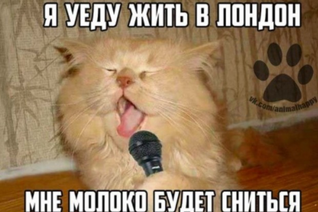 Соцсети остро отреагировали на решение Совета ЕС по безвизу для Украины