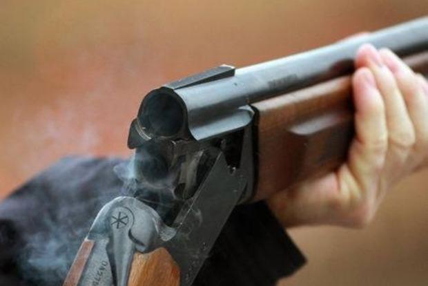 В Киевской области охотник застрелил племенную лошадь стоимостью более 50 тысяч евро