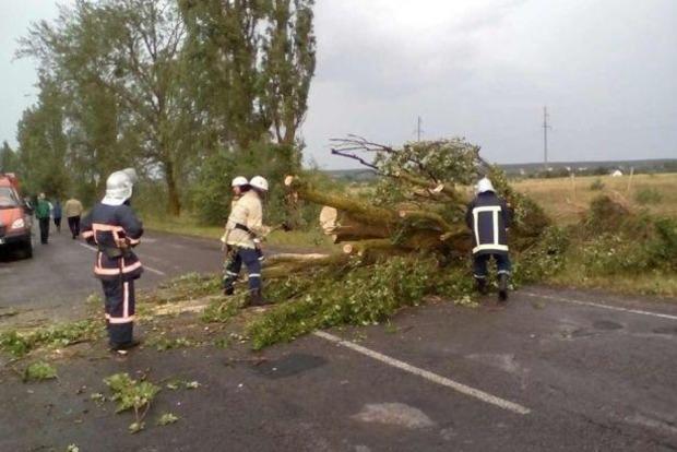 На Львовщине из-за непогоды 12 населенных пунктов остаются обесточенными