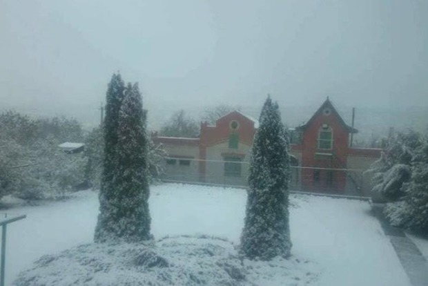 Началось: В Харькове выпал первый снег
