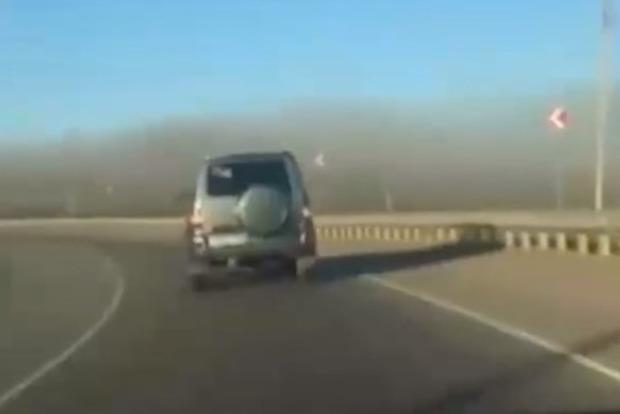 Кінець світу: на Росію обрушилися незліченні полчища сарани