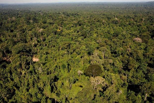 Бразильцы в ярости: президент отдал заповедник Амазонки на растерзание горнодобывающим компаниям
