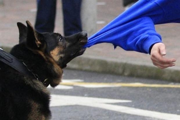 В Хмельницком полицейские застрелили собаку, которая напала на мужчину