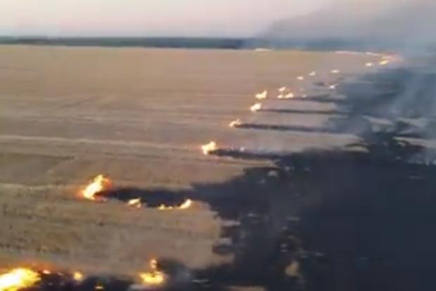 В Донецкой области масштабный пожар