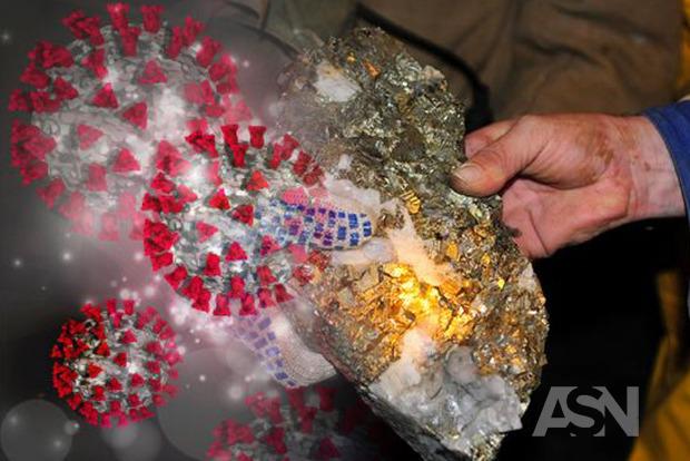 Не все то золото, что COVID. На золотодобывающем руднике зафиксирована мощная вспышка коронавируса