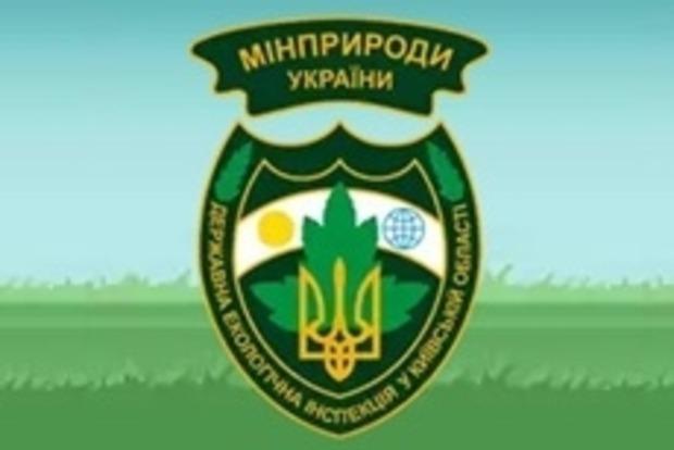 Яценюк приказал в течение суток уволить начальников Одесской и Николаевской областных экоинспекций