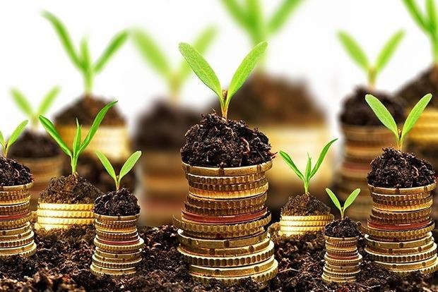 В парламенте отклонили законопроект о ликвидации Аграрного фонда