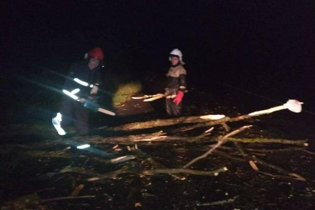 Ураган на Львовщине: повалены десятки деревьев, повреждены дома и автомобили