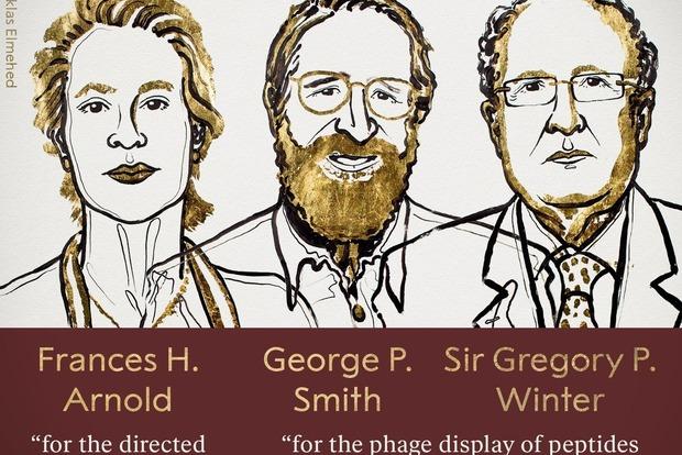 Нобеля-2018 по химии вручили за направленную эволюцию ферментов и антител».