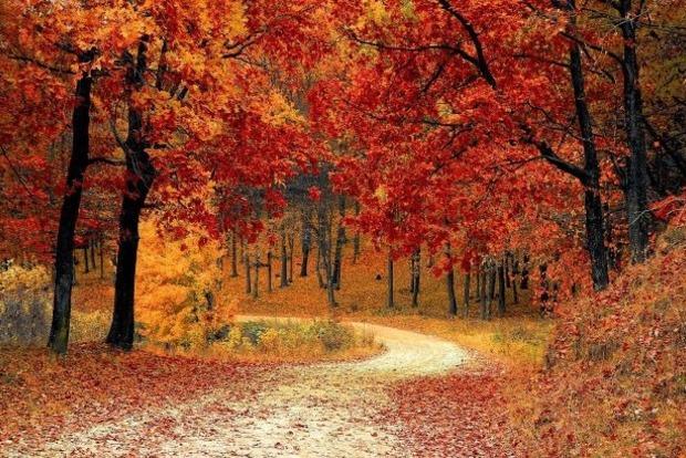 Синоптики оновили прогноз на листопад: такої погоди ще не було