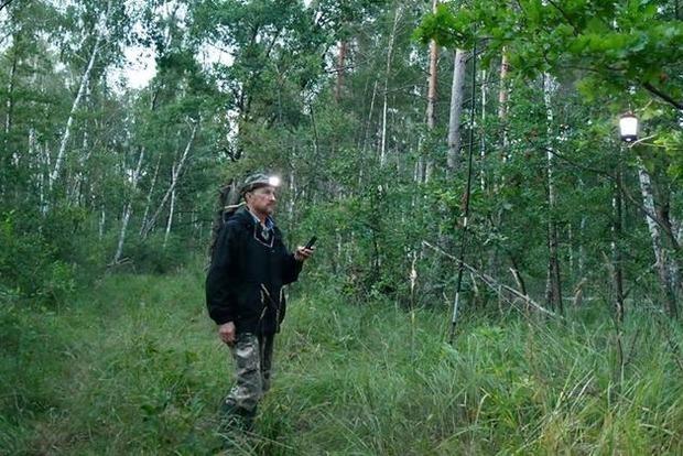 Бурый ушан, поздний кожан, лесной нетопырь и пигмей. В Зоне отчуждения нашли редких мышей