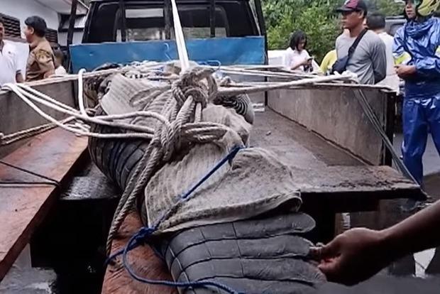 В Индонезии крокодил съел женщину-биолога