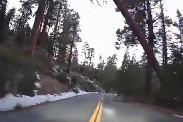 В национальном парке «Секвойя», в Калифорнии, огромное дерево упало на автомобиль.