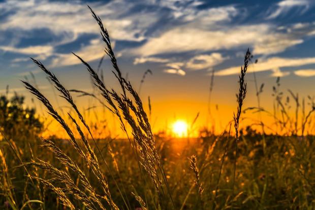 Что нужно  обязательно сделать в день летнего солнцестояния 21 июня