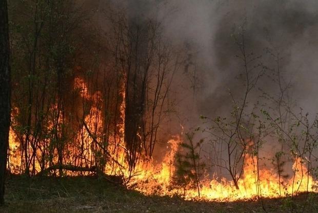 Україну чекають пожежі