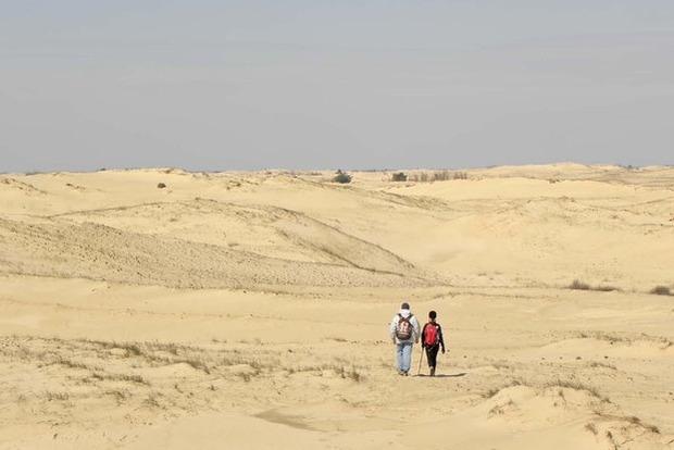 Одесская область превратится в пустыню. Синоптик предупредил об апокалипсисе