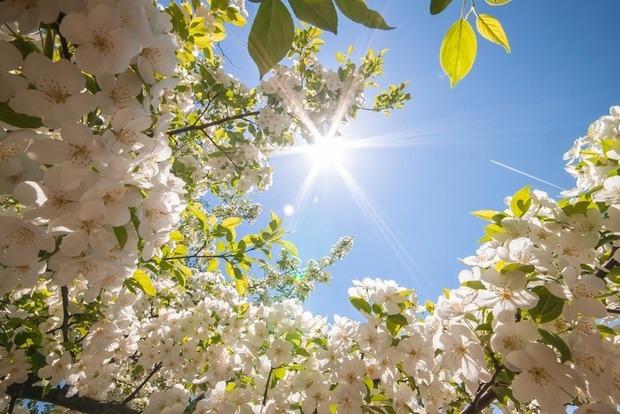 Теплые майские праздники: в Украине 2 мая воздух прогреется до 26°
