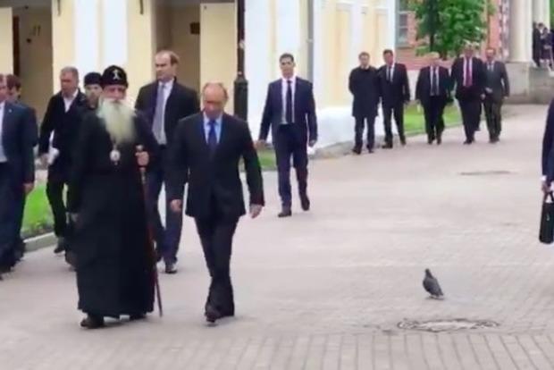 Путин и голубь: президент РФ поприветствовал птицу, а та бросилась наутек