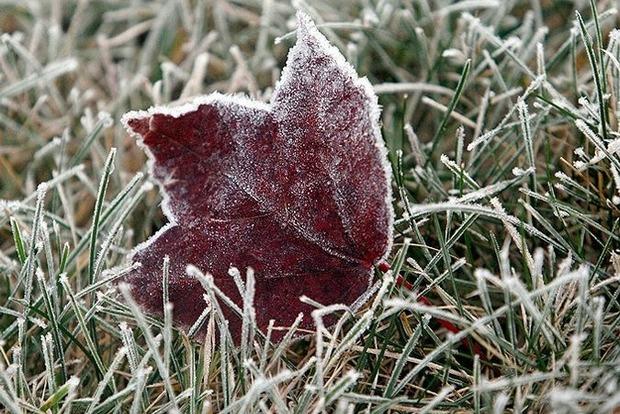 Антициклон принесе в Україну заморозки і похолодання