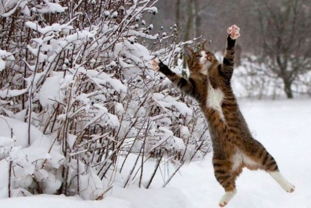 На Рождество в Украину придут 15-градусные морозы
