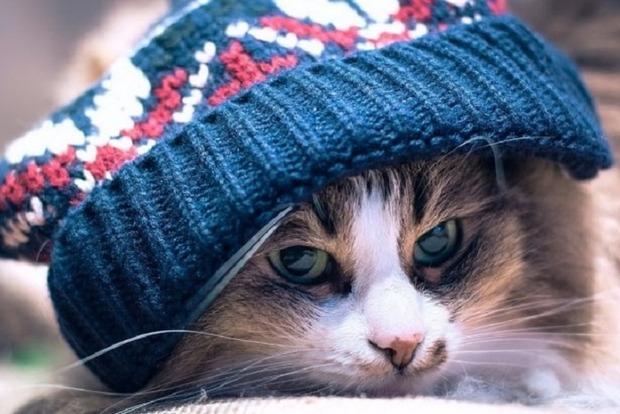 Несмотря на весну, украинцам надо готовиться к резкому похолоданию