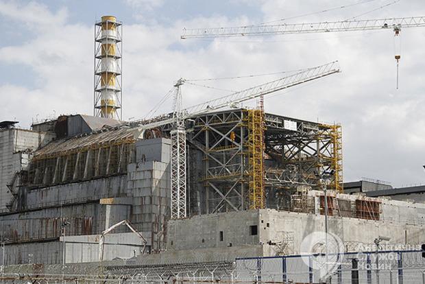 Ніякої ріллі 1000 років: еколог розповіла, як у жодному разі не можна використовувати Чорнобильську зону