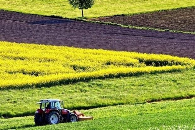 В Минагропроде рассказали, кто в Украине сможет скупать землю по 1000 га