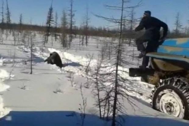В России установили всех подозреваемых в жестоком убийстве медведя