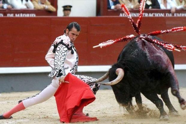 Во время корриды бык проткнул горло матадору, но все пожалели животное