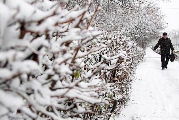 Погода вУкраїні: дощ із мокрим снігом