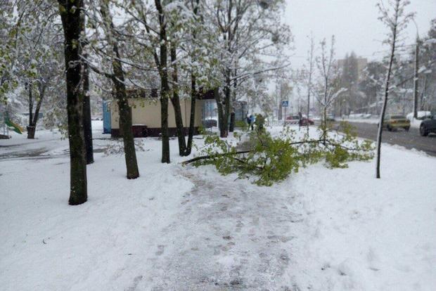 Зима продержится в Украине как минимум до 22 апреля