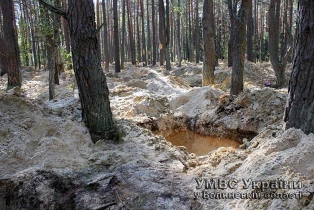 На Волыни задержали 50 добытчиков янтаря