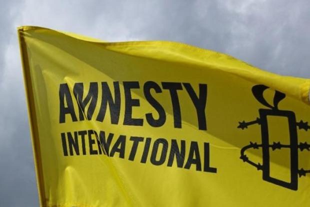 В Кабмине подозревают, что текст заявления Amnesty International продиктовали в Кремле