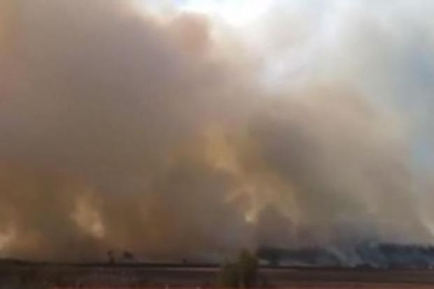 Дым застилает солнце. За Киевом снова загорелись леса