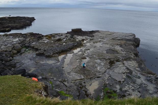 У Шотландії виявлено десятки слідів динозаврів