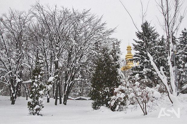 Какие области ожидают морозы доминус 25— Февраль становится лютым