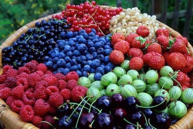 Диетологи рассказали, как правильно есть ягоды