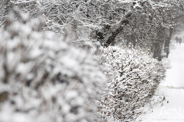 Синоптики назвати дату окончания «весны» вгосударстве Украина