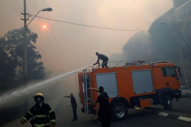 Пожары в Израиле: полиция задержала 13 подозреваемых в поджогах