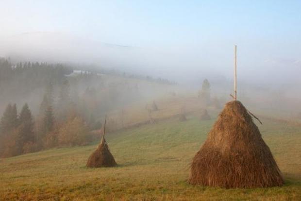 10 сентября: Анна и Савва Скирдники.Народные приметы на этот день