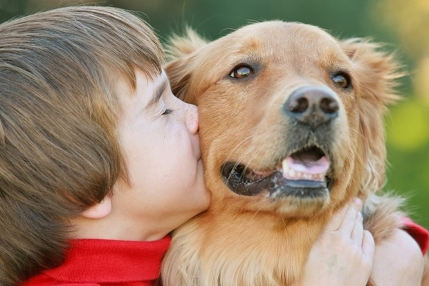 Домашние животные помогают детям справиться с ожирением и аллергией – исследование
