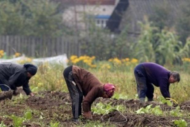 Може закінчитися летально: Супрун розкрила страшну правду про копання картоплі