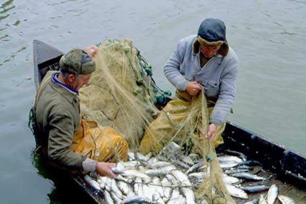Рыбаки в Одесской области угрожают перекрыть Дунай, если им не разрешать ловить рыбу