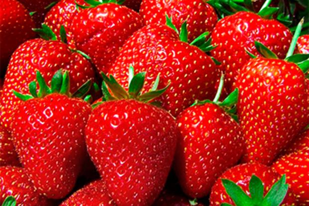 Из-за заморозков Украина потеряет треть урожая клубники. Сколько ягодка будет стоить летом